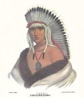 A Pawnee Brave Fine-Art Print