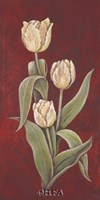 Tulips on Cinnabar II Fine-Art Print