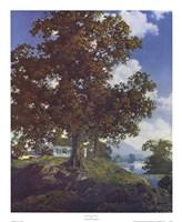 Peaceful Valley Fine-Art Print