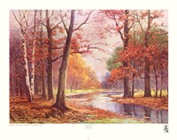 Autumn Glade Fine-Art Print