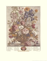 June/Twelve Months of Flowers, 1730 Fine-Art Print