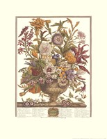 September/Twelve Months of Flowers, 1730 Fine-Art Print