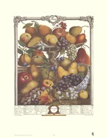 November/Twelve Months of Fruits, 1732 Fine-Art Print