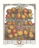 December/Twelve Months of Fruits, 1732 Fine-Art Print