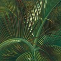 Exotic Passage Fine-Art Print