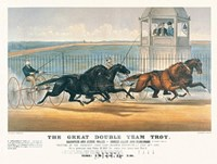 Great Double Team Trot Fine-Art Print