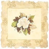 Victorian Magnolia Fine-Art Print