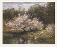 Sheep Grazing Under Apple Blossoms Fine-Art Print
