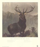 Monarch of the Glen Fine-Art Print