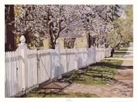 Spring Walk Fine-Art Print