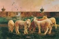 Five Lambs, 1988 Fine-Art Print
