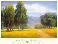 Path Through the Poppies Fine-Art Print