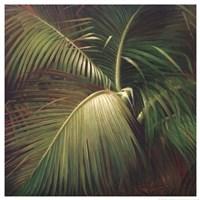 Tropical Seclusion Fine-Art Print