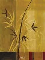 Bamboo Impressions I Fine-Art Print