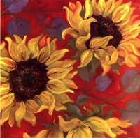 Sunflower II Fine-Art Print
