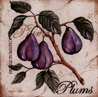 Fruit from the Branch III Fine-Art Print