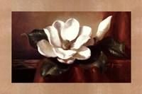 Magnolia Vignette l Fine-Art Print