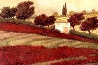Apapaveri Toscana I Fine-Art Print