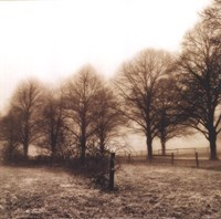 Fence Row and Trees Fine-Art Print