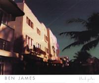 Black Palms Fine-Art Print