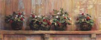 Strawberries in Pots Fine-Art Print