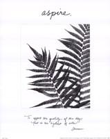 Aspire Fine-Art Print
