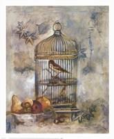 Song Bird I Fine-Art Print