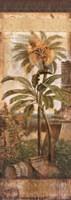 Antilles II Fine-Art Print