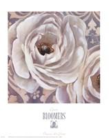Bloomers II Fine-Art Print