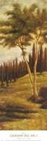 Canyon del Sol I Fine-Art Print