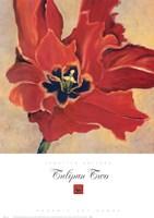 Tulipan Two Fine-Art Print