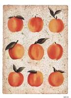 Peach Collage Fine-Art Print