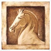 Equus Fine-Art Print