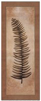 Ferns Palms IV Fine-Art Print