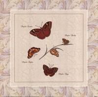 Papilio I Fine-Art Print