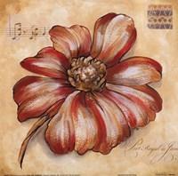 Blossoms IV Fine-Art Print
