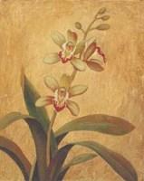 Orchid In Landscape I Fine-Art Print