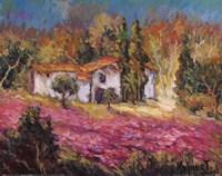 Vineyards In Provence I Fine-Art Print