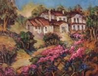 Vineyards In Provence III Fine-Art Print