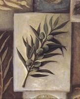 Cuisine De Provence II Fine-Art Print