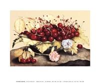 Piatto di Baccelli Fine-Art Print