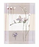 Impression Florale II Fine-Art Print