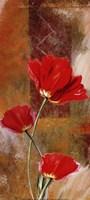 Three Tulips Fine-Art Print