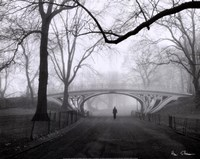 Gothic Bridge, Central Park, NYC Fine-Art Print