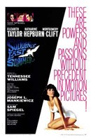 Suddenly Last Summer Wall Poster