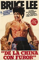 Fists of Fury Spanish Wall Poster