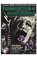Evil of Frankenstein Wall Poster