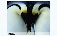 March of the Penguins Love Fine-Art Print