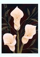 Botanical Elegance II Fine-Art Print