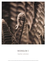 Moonglow I Fine-Art Print